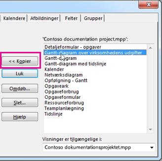 Organiseringen i Project, der viser listen over elementer i det aktuelt åbnede projekt.