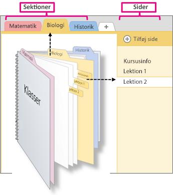 En oversigt over sektioner og sider