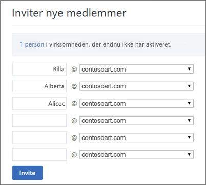 Det primære domæne vises, når du inviterer brugere til din Yammer-gruppe