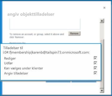 Skærmbillede af dialogboksen Angiv objekttilladelser i SharePoint Online. Brug denne dialogboks til at angive tilladelser for en bestemt ekstern indholdstype.