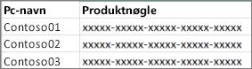 Eksempel på liste med produktnøgler med to kolonner.