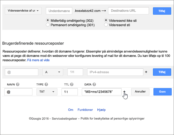 Google-Domains-BP-konfigurere-4-2