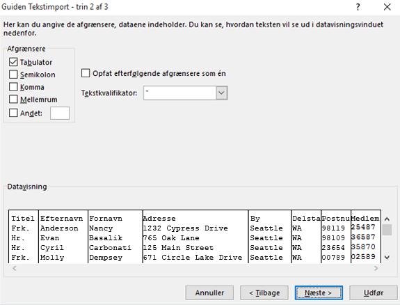 Indstillingerne for afgrænsere er fremhævet i guiden Tekstimport.