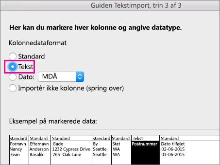 Guiden Tekstimport, trin 3