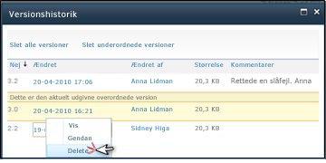 Dialogboksen Versionshistorik, hvor der er valgt Slet for en filversion