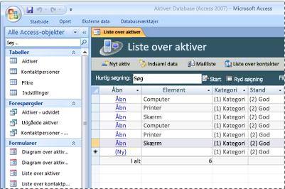 Brug af skabelonen Database over aktiver