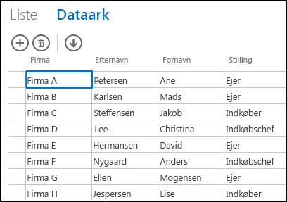 Dataarkvisning af kundeposter