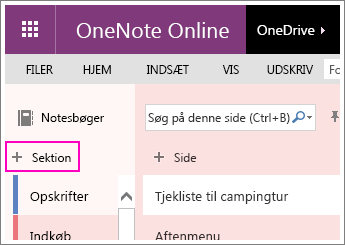 Screenshot of how to create a new section in OneNote Online.