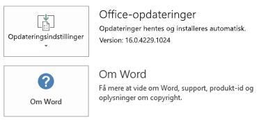 Når Office er installeret ved hjælp af Klik for at køre-teknologi, ser program- og opdateringsoplysningerne sådan ud.