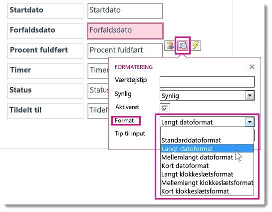 Billede af menuen Formatering i en Access-app.