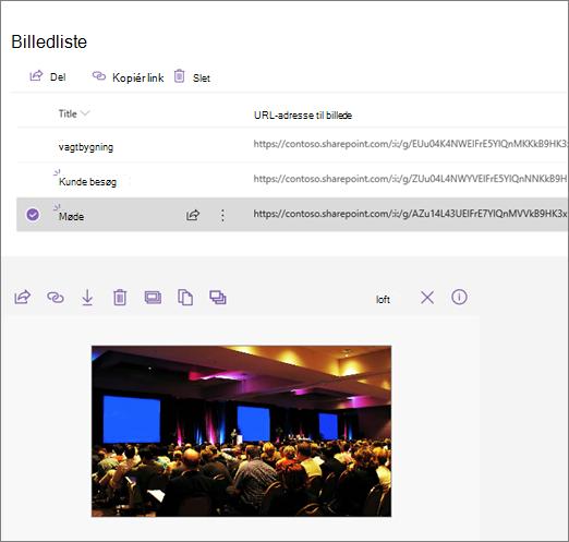 Eksempel på en integreret webdel, der er forbundet med en liste over billeder