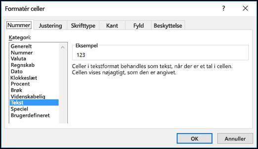 Dialogboksen Formatér celler, der viser fanen Tal og indstillingen Tekst markeret