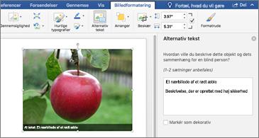 Word-dokument med et billede og ruden Alternativ tekst til højre