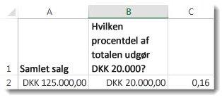 DKK 125.000 i celle A2, DKK 20.000 i celle B2 og 0,16 i celle C3