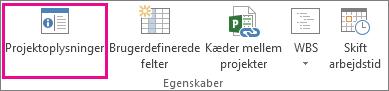 Projektoplysninger under fanen Projekt
