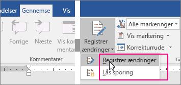 Når du klikker på knappen Registrer ændringer, bliver de tilgængelige muligheder fremhævet