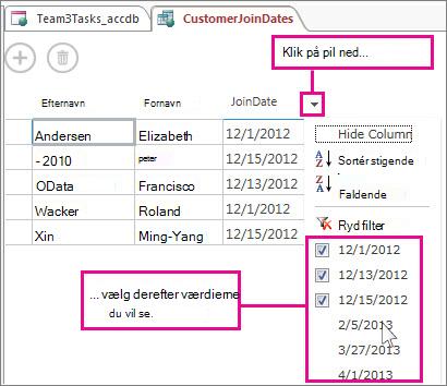 Filtrere en kolonne i en forespørgsel i en Access-app.