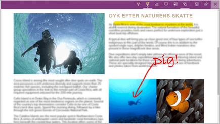 Skærmbillede af en internetnote på en side i Microsoft Edge