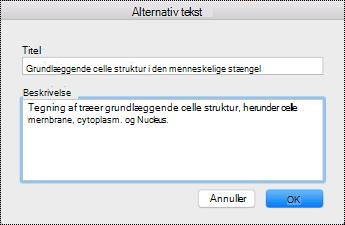 Dialogboksen Alternativ tekst til OneNote på Mac.
