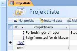 Skabelonen Projektdatabase