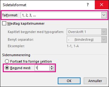 Ændre talformat og starttallet i sidetalsformat.