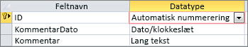 Primær nøgle af typen AutoNumber mærket som id i designvisning af tabel i Access
