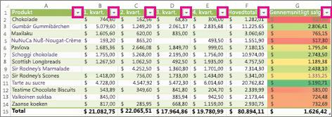 En Excel-tabel, der viser indbyggede filtre