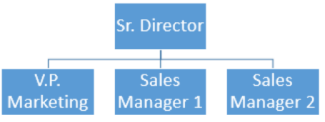 Enkelt organisationsdiagram