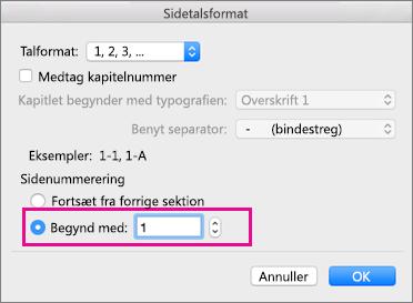 I feltet Sidetalformat, skal du begynde med = 1.