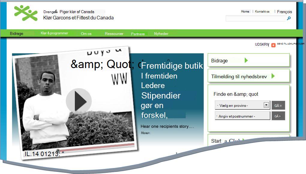 Øjebliksbillede af BGCC hjemmeside