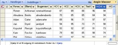 Du kan bruge dataarkvisningen til indtastning af karakterer til at opdatere karaktererne.