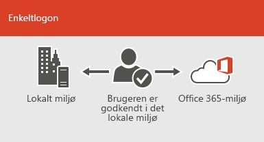 Med enkeltlogon er den samme konto tilgængelig både lokalt og online