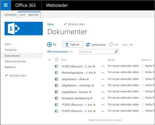 Et billede af hvordan biblioteket Dokumenter ser ud, når du overfører filer til den.
