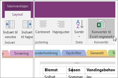 Skærmbillede af knappen Konvertér til Excel-regneark i OneNote 2016.