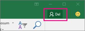 Viser ikonet Del på båndet i Excel 2016 til Windows