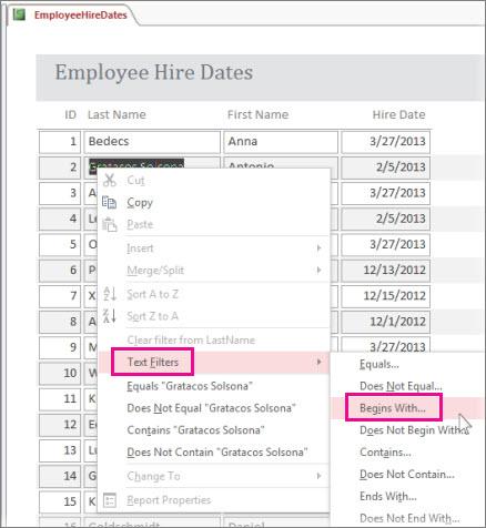 Anvende et filter i en rapport ved at højreklikke på en værdi i Rapportvisning.