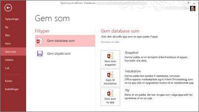 Muligheder for at gemme som database på skærmbilledet Gem som
