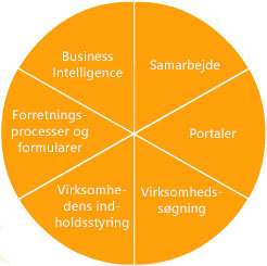 funktioner i sharepoint server 2007