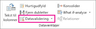 Datavalidering under fanen Data