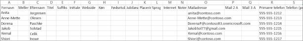 Sådan ser et eksempel på en CSV-fil ud med en række kontaktoplysninger.