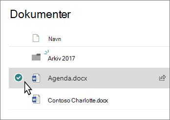 Skærmbillede af et bibliotek med en markeret fil