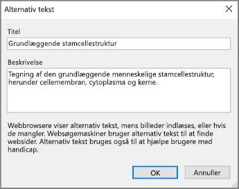 Skærmbillede af dialogboksen Alternativ tekst i OneNote med teksteksempler i felterne Titel og Beskrivelse.