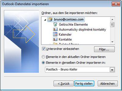 Import/Export-Assistent mit ausgewählten Standardoptionen