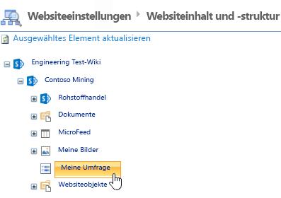 """Klicken Sie im Fenster """"Website-Manager"""" auf der Schnellstartleiste auf """"Umfrage""""."""