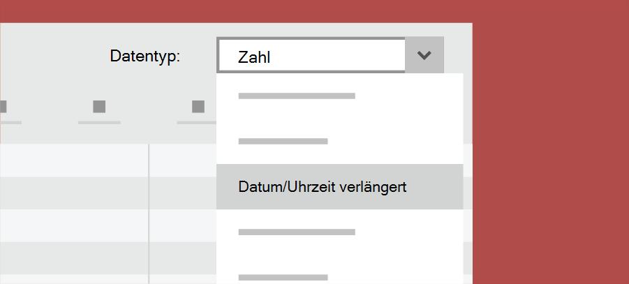 Zeigt den Access-Datentyp