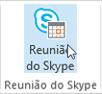 """Schaltfläche """"Skype-Besprechung"""""""