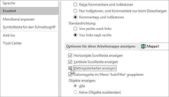 Anzeigen von Blattregistern in den Excel-Optionen