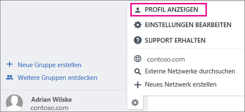 """Screenshot der Einstellung """"Profil anzeigen"""" in Yammer"""