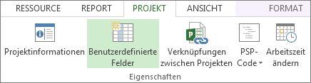 Registerkarte 'Projekt', Befehl 'Benutzerdefinierte Felder'