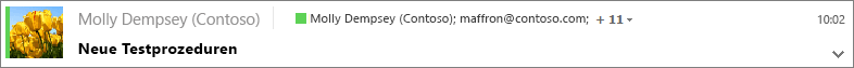 """Wählen Sie im Ordner """"Gesendete Elemente"""" eine Nachricht aus, um die Bcc-Empfänger anzuzeigen, und klicken Sie ggf. auf den Erweiterungspfeil, um den gesamten Nachrichtenkopf zu sehen."""